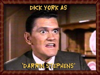 Dick York as Darrin Stephens